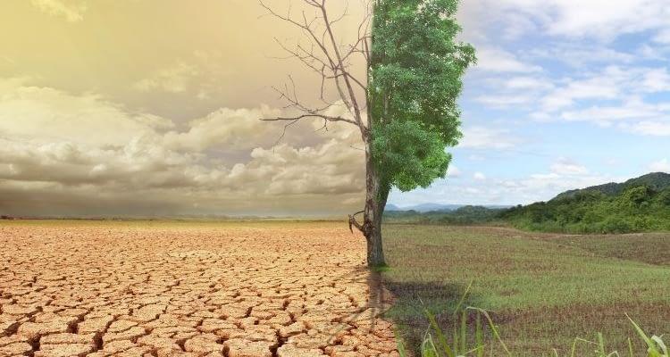 """İklimbilimciden endişe veren uyarı: """"Türkiye tropik iklime geçiş yapıyor"""""""