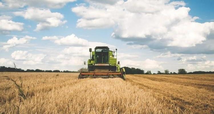 Avrupa gıda ve içecek endüstrisi, yılın 2. çeyreğini nasıl geçirdi?