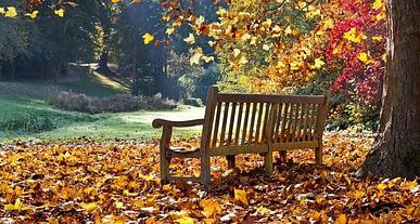 Sonbahar geldi! Çocuk hastalıklarına karşı önlem alın