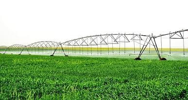 Tarım Bakanlığının yeni vizyonu: Suya göre tarım!