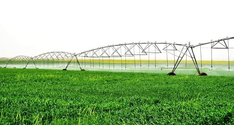 Tarımda yanlış sulamanın bedeli: 25 milyar metreküp su kaybı!