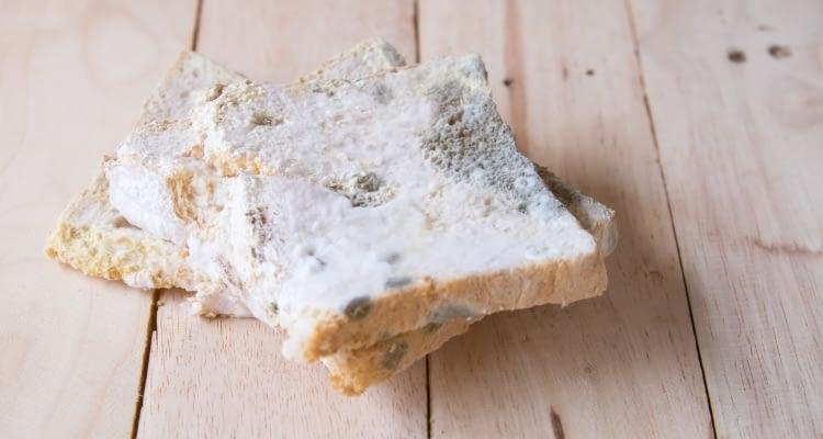 Küflü ekmeğin küfsüz kısmını yemek zararlı mı? Bilimsel açıklama…