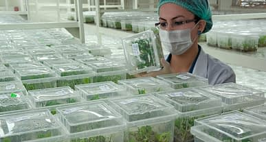 Tarıma teknolojik yatırım karşılıksız kalmadı!
