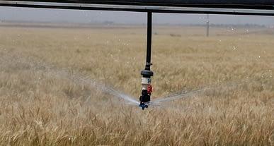 Bakan Pakdemirli düğmeye bastı: 60 bin dekar arazi suya kavuştu!