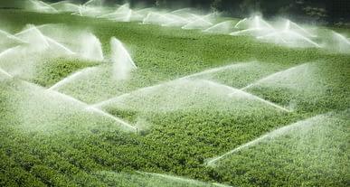 Yağmurlama sulamada %35, damla sulamada %65 su tasarrufu!
