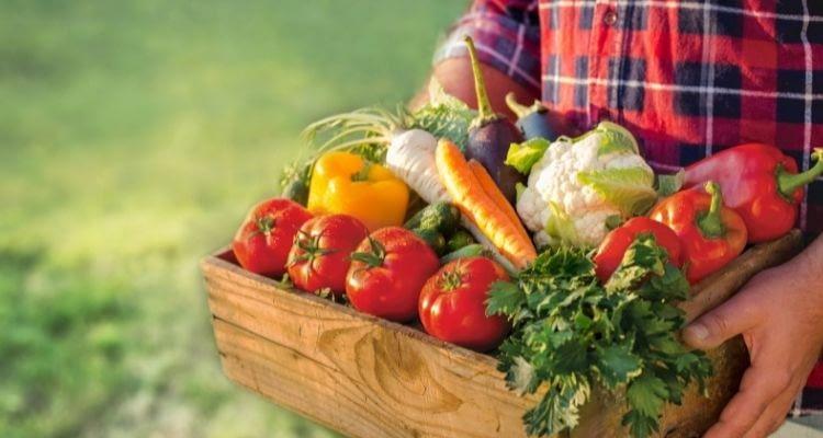 Mevsim sebzeleri nelerdir? Hangi sebze hangi ayda tüketilir?